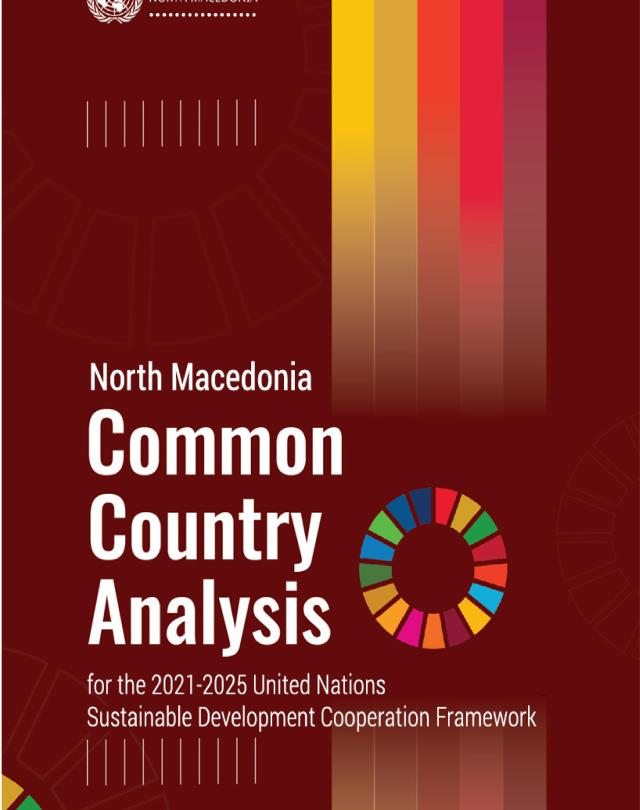 Front page of the Common Country Analysis Report